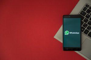 um ano de whatsapp business